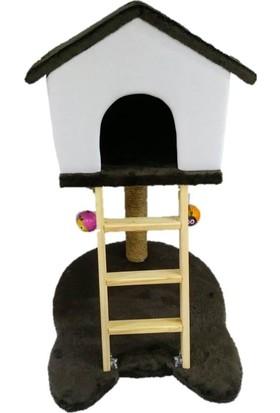 Pets Süngerli Kedi Kafası Modelli Merdiven ve Tırmalamalı Kedi Evi