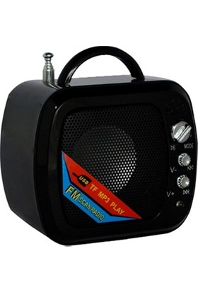 Platoon PL-4474 Mini Speaker FM/SD/Batarya Destekli