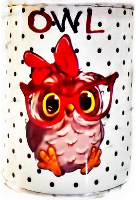 Aray Kumbara Baykuşlu (Owl)