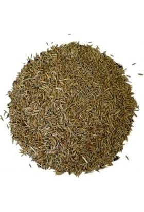 Aktarix Çim Tohumu 500 gr