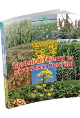 Hasad Enerji Bitkileri ve Biyoyakıt Üretimi Kitabı