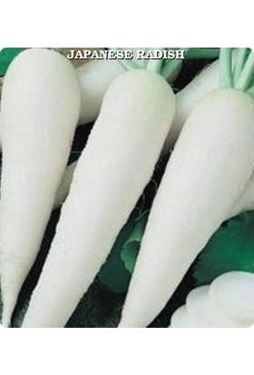 E-fidancim Beyaz Japon Turp Tohumu (550 tohum)