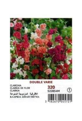 E-fidancim Karışık Renkli Katmerli Klarkiya Çiçeği Tohumu (300 tohum)