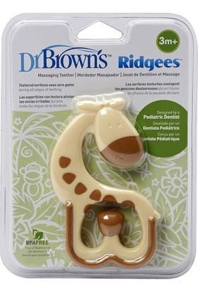Dr Brown 445 Zürafa Dişlik