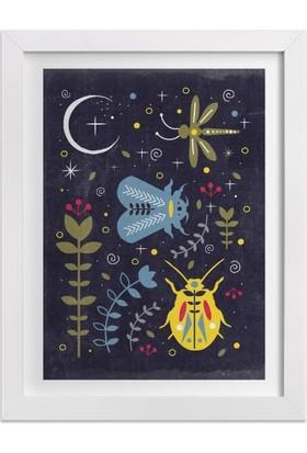 Ahşap Mahzeni Çerçeveli Tablo Desenli Böcekler