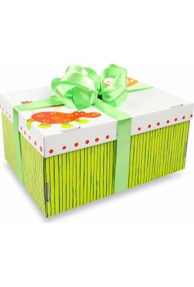 Sepet Diyarı Hediye Kutusu Doğum Paketi ( Kız Bebek) / Renkli Kutu