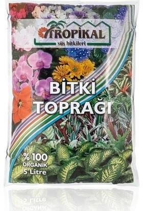 Yalova Fidan Market Tropikal ''Bitki Toprağı)