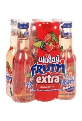 Uludağ Frutti Extra Orman Meyveli 250 Ml