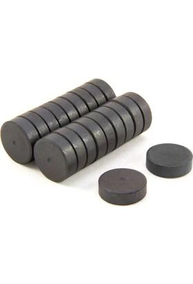Elite Mıknatıs 50 Adet Mıknatıs Magnet Yuvarlak Süsleme Mıknatısı Çap: 1,2 cm , En: 0,4 cm_1036