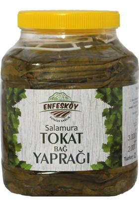 Enfesköy Tokat Salamura Bağ Yaprağı 3000 gr