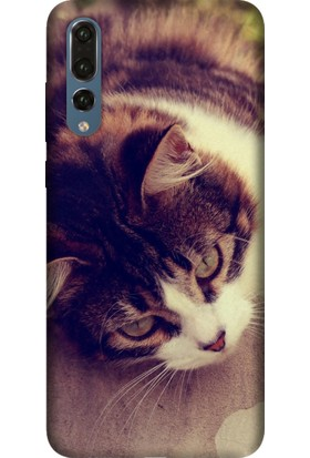 Tomkas Samsung Galaxy S9 Kılıf Desenli İnce Silikon Kapak - Tekir Kedi