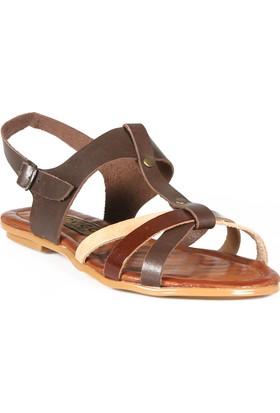 Rovigo Kadın Kahverengi Sandalet 1111900546