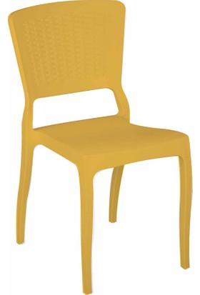 Tilia Antro Rattan Sandalye Ahşap Rengi