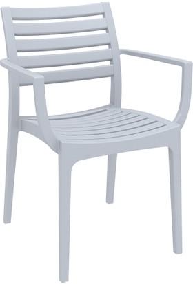 Siesta Contract Artemis Sandalye Gümüş Gri