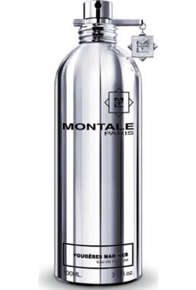 Montale Fougeres Marines Edp 100 ml Unisex Niş Parfüm