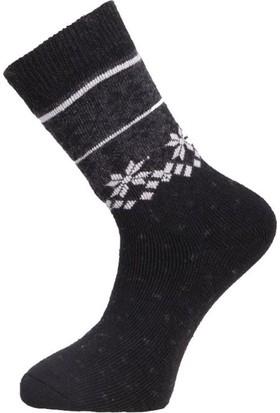 Panthzer Casual Wool Erkek Çorap Siyah Siyah