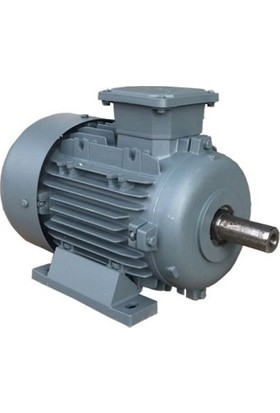 Volt Yüksek Devir Elektrik Motoru 0,75Kw 1500 Devir 380V Ie2 (50 Gövde Redüktör İçin)