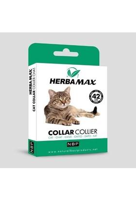 Herba Max Kedi Tasması 42 cm