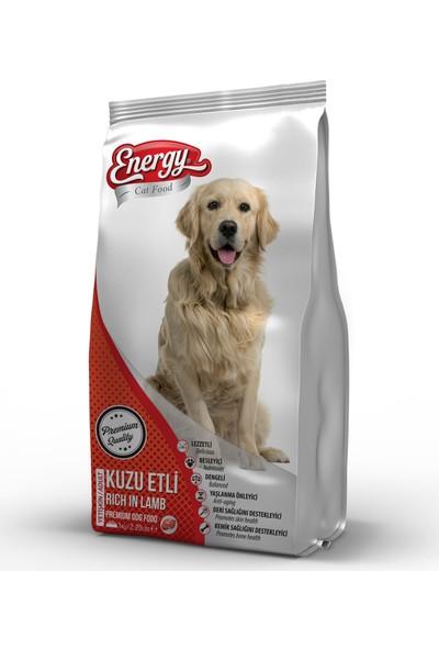 Dog Food Energy Kuzu Etli & Pirinçli Yetişkin Köpek Maması - 3 kg