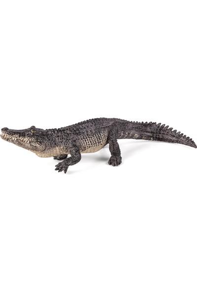 Animal Planet Timsah (Alligator) Çenesi Hareketli