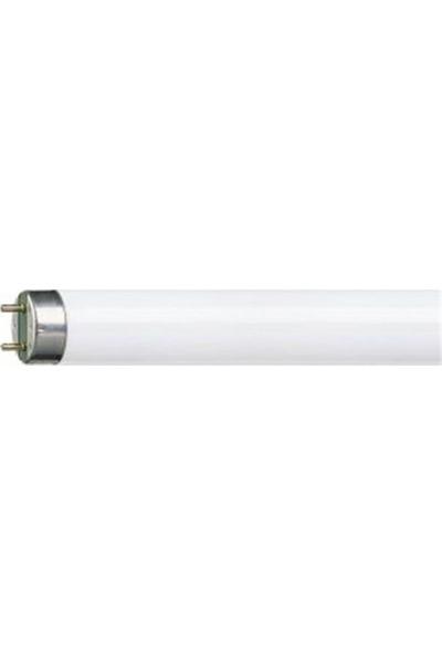 Amp Flore T8 G13 Sinek 10W/Bl