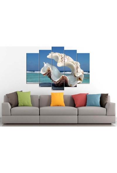 Sibiro Deniz Konsept MDF Tablo İstiridye 70 x 100 cm Azyzb57