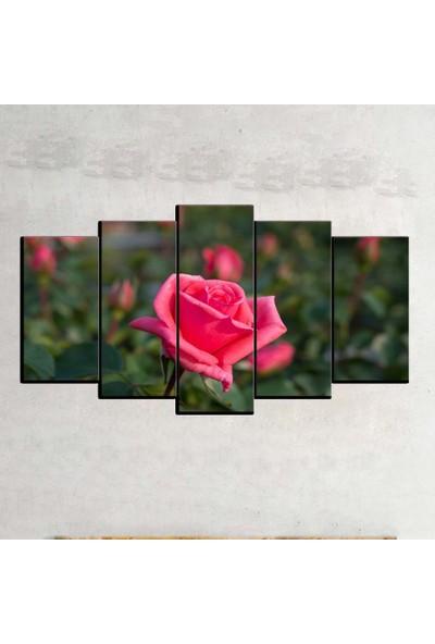 Kanvas Burada FLO5-346 Çiçek 5 Parçalı Dekoratif Kanvas Tablo - 120 x 60 cm
