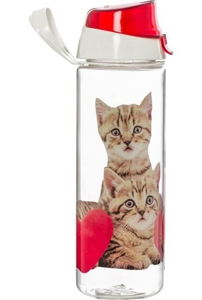 Kedi Baskılı 750 ML Kırılmaz Matara