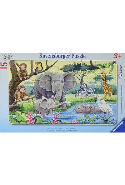 Ravensburger 15 Parça Hayvanlar Çerçeveli Puzzle