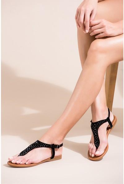 Fox Shoes Siyah Kadın Sandalet B548392002