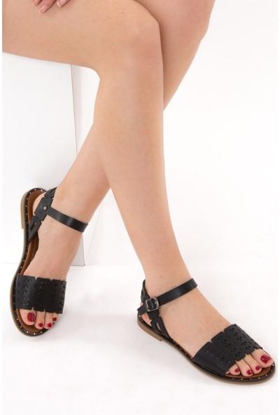 Fox Shoes Siyah Kadın Sandalet D641671009