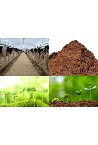 Agrobit Sığır , İnek , ( Büyük Baş Hayvan Gübresi ) Çiçek Ve Bitkileriniz İçin 10 Lt 2203_02 £