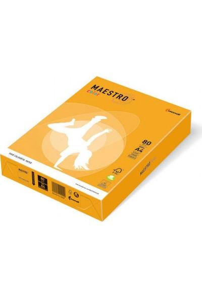Maestro Color A4 Renkli Fotokopi Kağıdı Altın (Koyu Sarı) AG10 1 Koli (5 Paket 2500 Sayfa)
