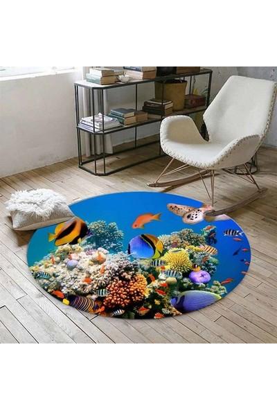 Else Kadser Balıklı Akvaryum 3D Yuvarlak Halı - 150x150 cm