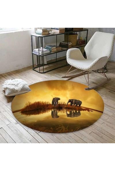 Else Kadser Afrika Filler Göl 3D Yuvarlak Halı - 150x150 cm