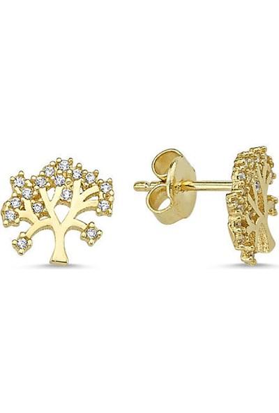 Sembolgold Altın İğne Küpe Hayat Ağacı Tasarım Kpy-208