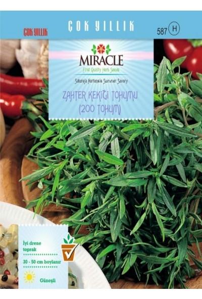 Miracle Tohum Miracle Zahter Kekiği Tohumu (200 tohum)