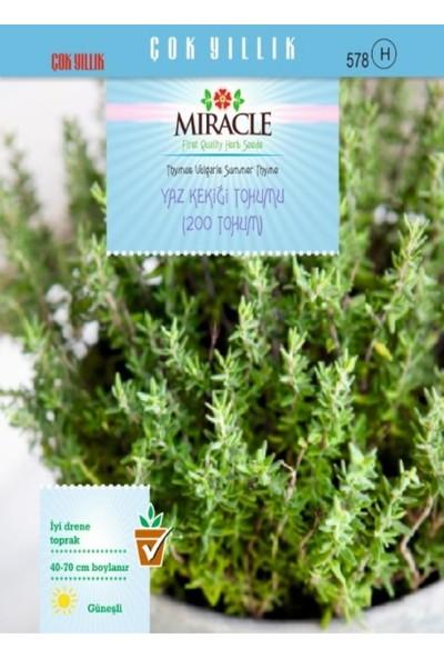 Miracle Tohum Miracle Yaz Kekiği Tohumu (200 tohum)