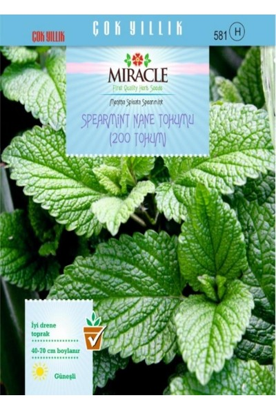 Miracle Tohum Miracle Spearmint Nane Tohumu (200 tohum)