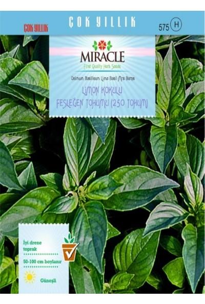 Miracle Tohum Miracle Limon Kokulu Fesleğen Tohumu (250 tohum)