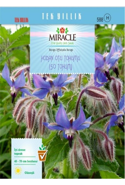 Miracle Tohum Miracle Hodan Otu Tohumu (50 tohum)