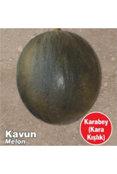 Miracle Tohum Miracle Karabey Siyah Kışlık Kavun Tohumu (10 gram)