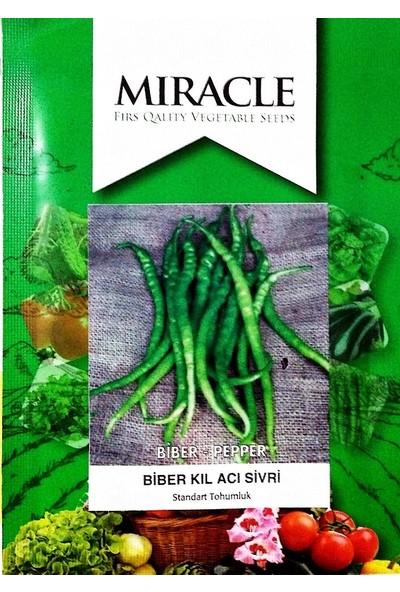 Miracle Tohum Miracle Acı Sivri Kıl Biber Tohumu (10 gram)