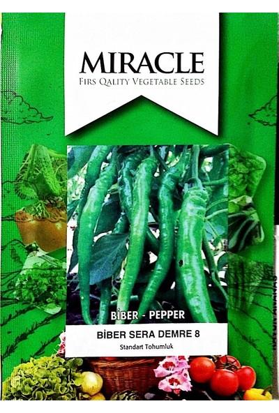 Miracle Tohum Miracle Semra Demre Biber Tohumu (10 gram)
