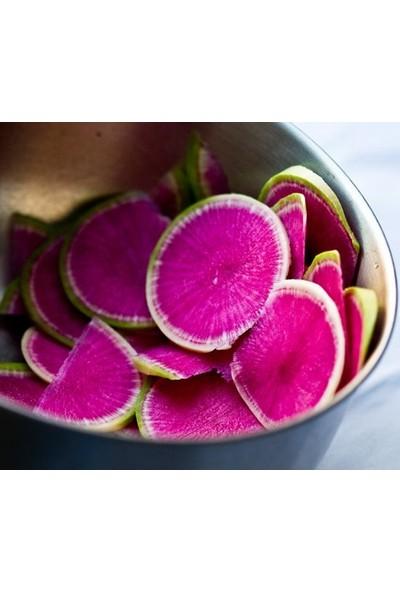 E-fidancim Doğal İçi Kırmızı Dışı Beyaz Sulu Watermelon Turp Tohumu (50 tohum)