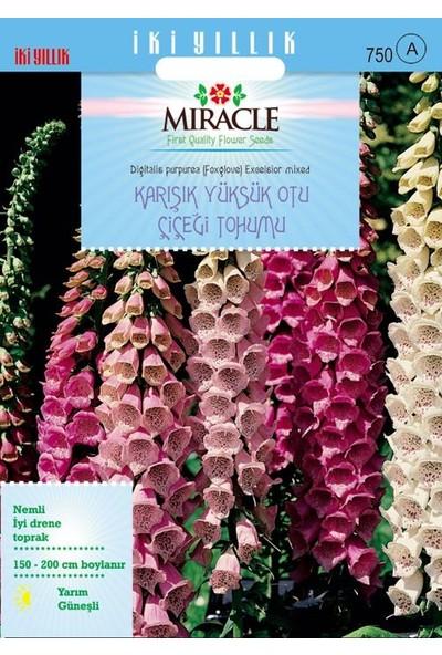 Miracle Tohum Miracle Excelsior Mixed Karışık Renkli Yüksükotu Çiçeği Tohumu (700 tohum)
