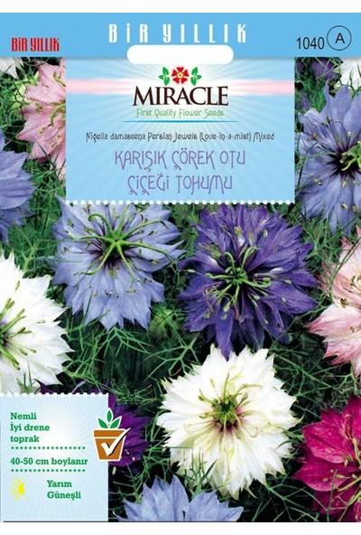 Miracle Tohum Miracle Karışık Renkli Çörek Otu Çiçeği Tohumu (850 tohum)