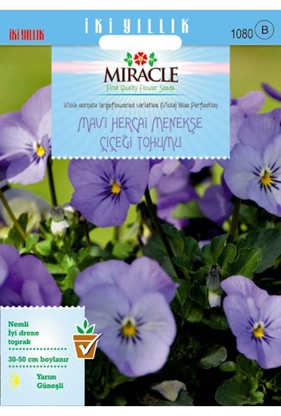 Miracle Tohum Miracle Blue Perfection Mavi Hercai Menekşe Çiçeği Tohumu (150 tohum)