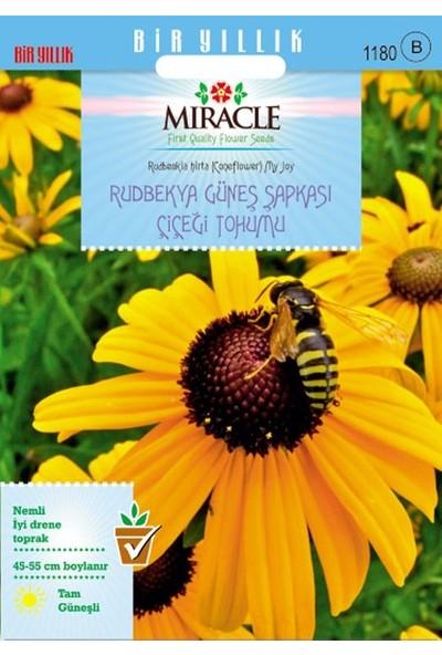 Miracle Tohum Miracle Hirto My Joy Rudbekya (Güneş Şapkası) Çiçeği Tohumu (900 tohum)
