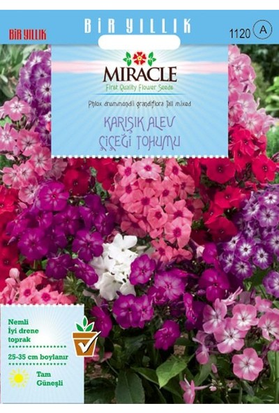 Miracle Tohum Miracle Karışık Renkli Alev Çiçeği Tohumu(340 tohum)